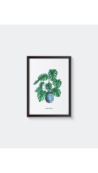 Poster Plant Monstera A: A4 - 6 stuks