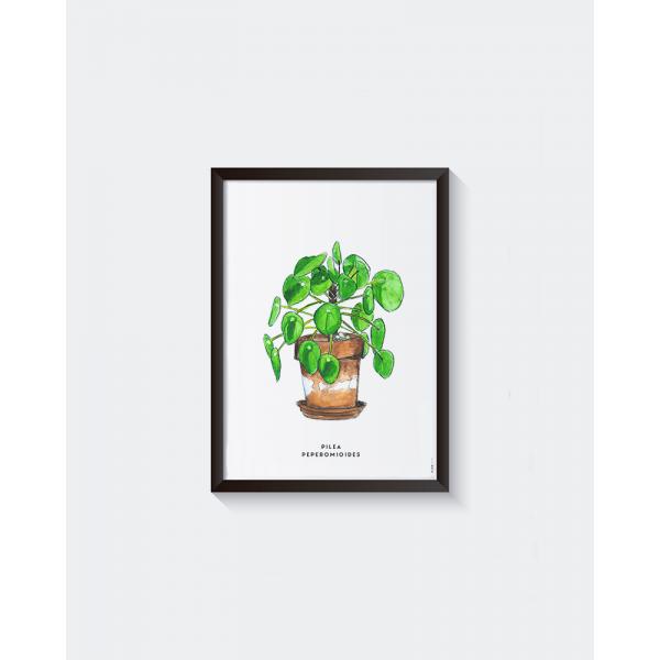 Poster Plant Pannenkoek A: A4 - 6 stuks