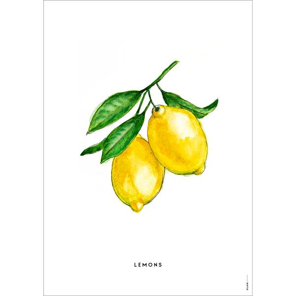 Poster Citroenen - 6 stuks