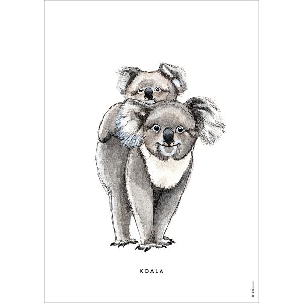 Poster Koala - 6 stuks