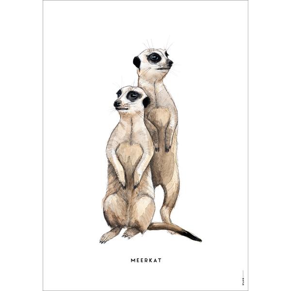 Poster Stokstaartjes - 6 stuks
