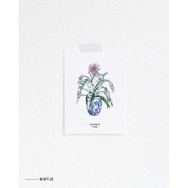 Ansichtkaart Plant Aechmea Pink - 10 stuks