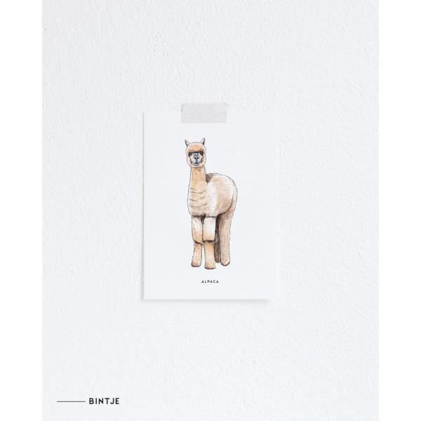 Ansichtkaart Alpaca - 10 stuks