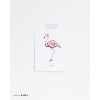 Ansichtkaart Flamingo - 10 stuks