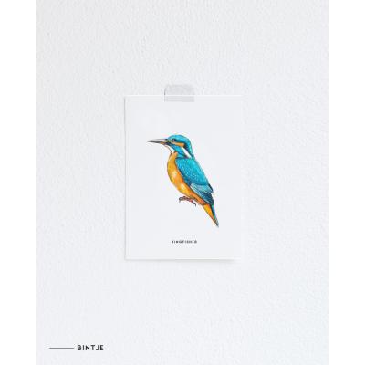 Ansichtkaart IJsvogel - 10 stuks