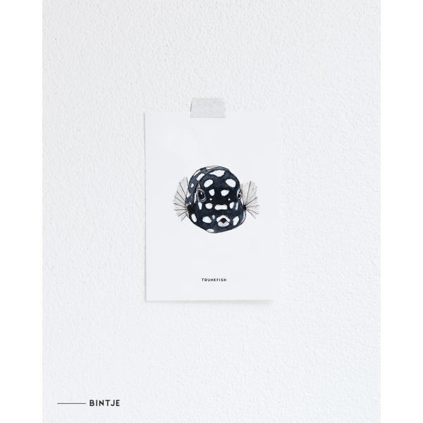 Ansichtkaart Koffervis - 10 stuks
