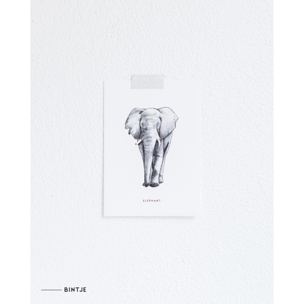 Ansichtkaart Olifant - 10 stuks