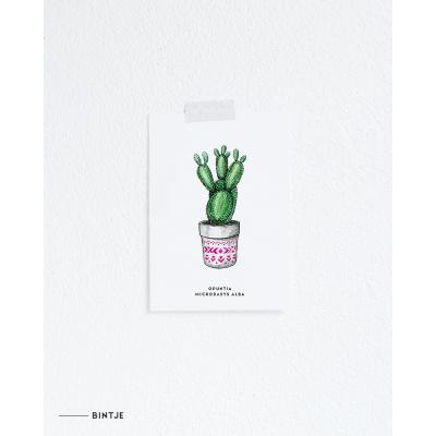 Ansichtkaart Plant Cactus - 10 stuks