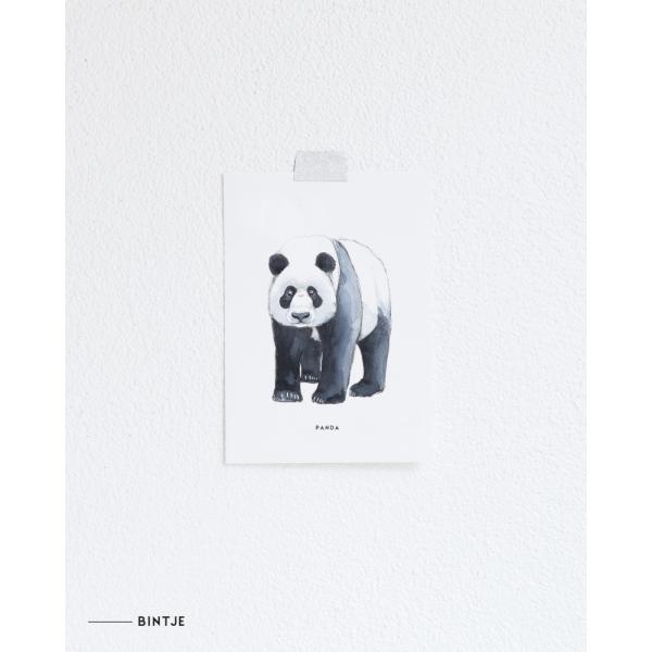 Ansichtkaart Panda - 10 stuks