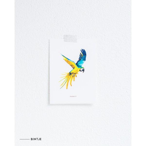 Ansichtkaart Papegaai - 10 stuks