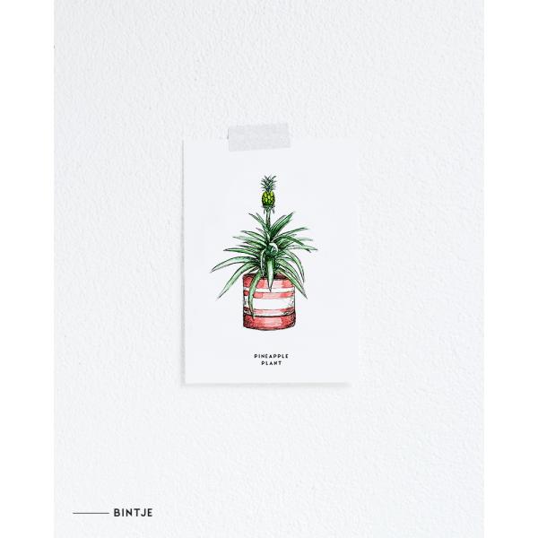 Ansichtkaart Ananasplant - 10 stuks