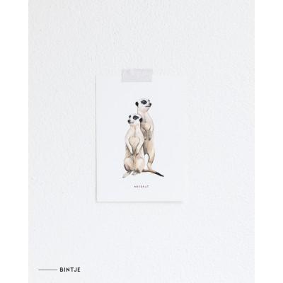 Ansichtkaart Stokstaartjes - 10 stuks