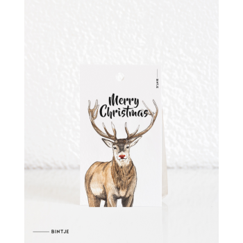 Cadeaukaartjes Christmas - 20 stuks