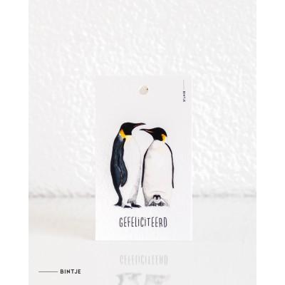 Cadeaukaartjes Pinguins - 20 stuks