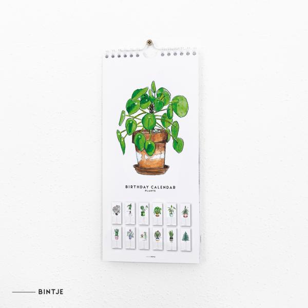 Verjaardagskalender planten - 6 stuks