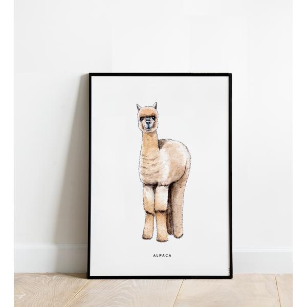 Poster Alpaca B: 30x40 - 5 stuks