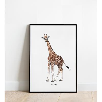 Poster Giraf B: 30x40 - 6 stuks
