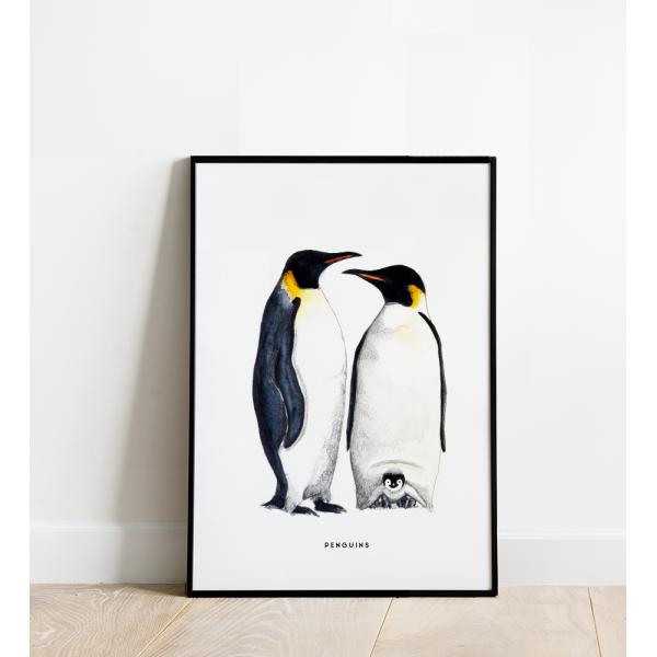 Poster Pinguins B: 30x40 - 6 stuks