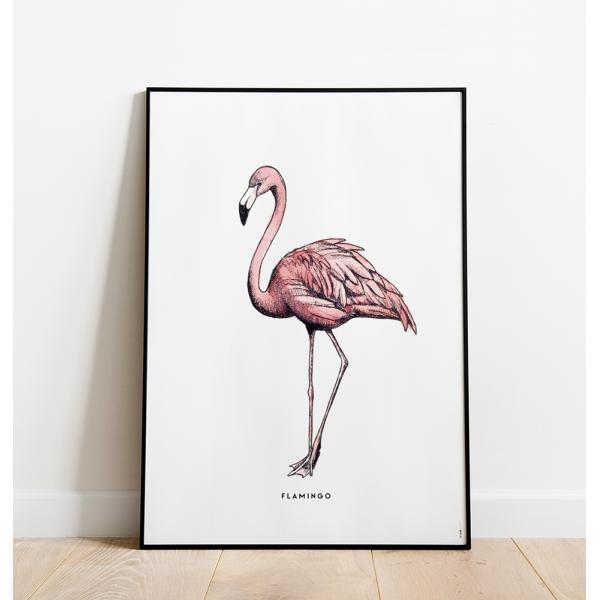 Poster Flamingo C: 50x70 - 6 stuks