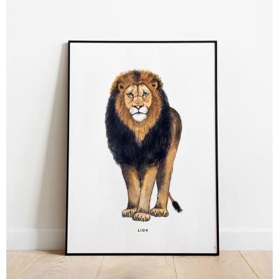 Poster Leeuw C: 50x70 - 6 stuks