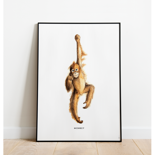 Poster Aap C: 50x70 - 6 stuks