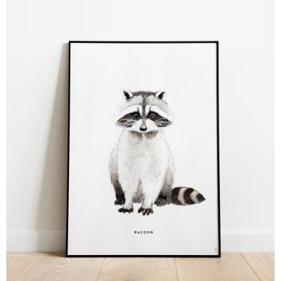 Poster Wasbeer C: 50x70 - 5 stuks