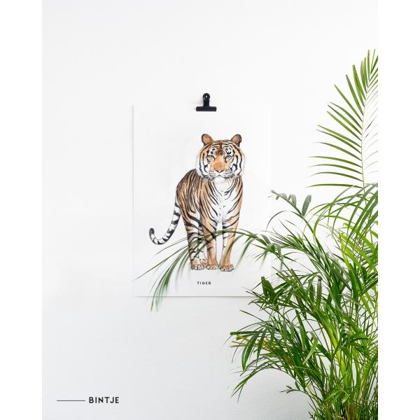 Poster 50x70 Tijger - 5 stuks