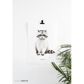 Poster 50x70 Wasbeer - 5 stuks