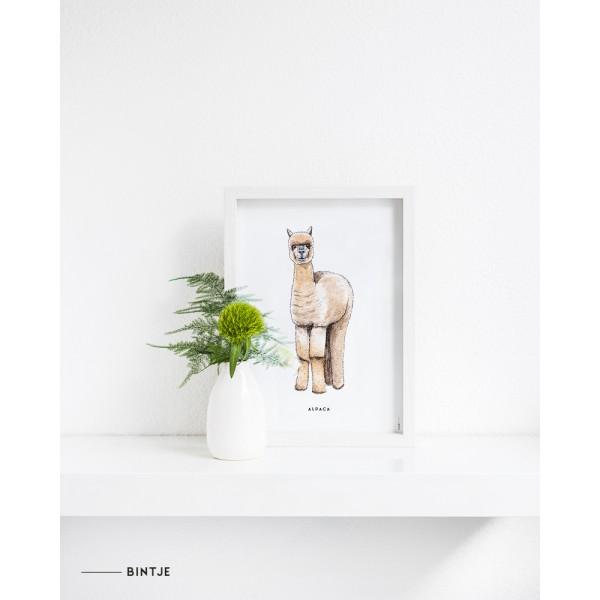 Poster Alpaca  A: 6 stuks DE LAATSTE
