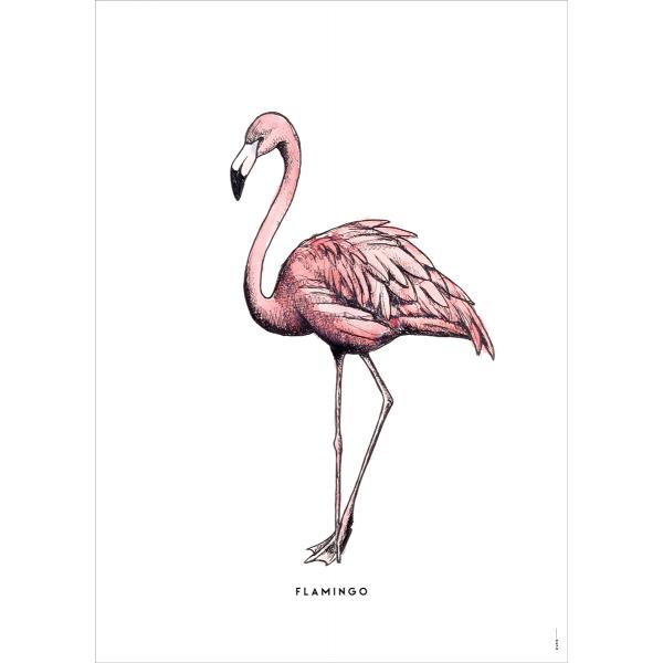 Poster Flamingo - 6 stuks