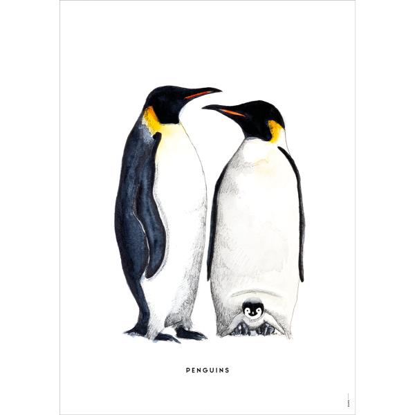 Poster Pinguins - 6 stuks