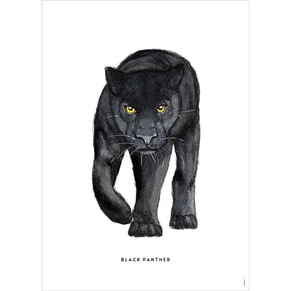 Poster Zwarte panter - 6 stuks