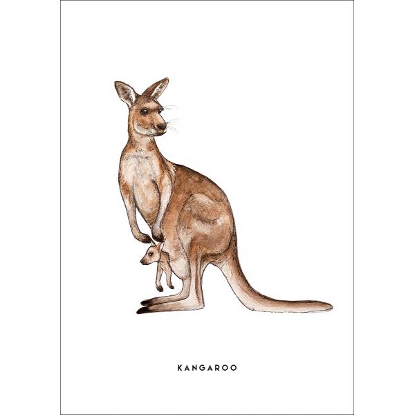Ansichtkaart Kangoeroe - 10 stuks