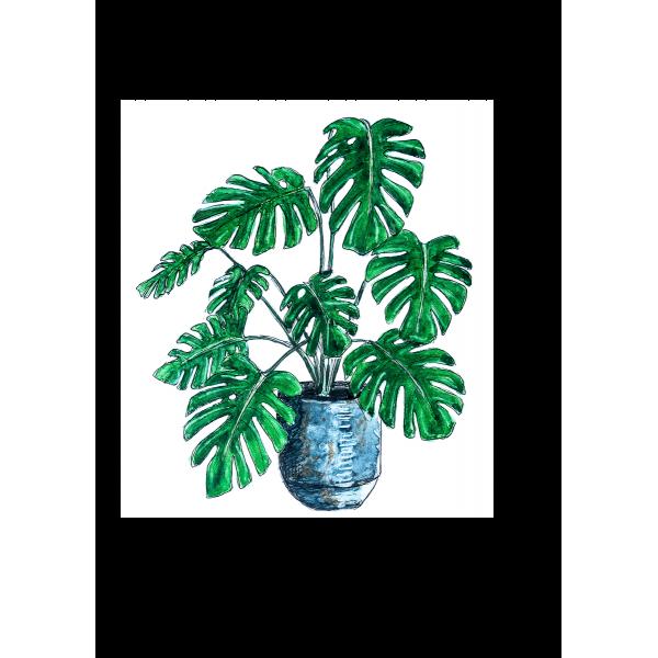 Ansichtkaart Plant Monstera - 10 stuks