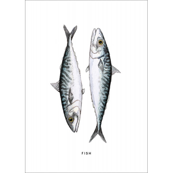 Ansichtkaart Vissen - 10 stuks