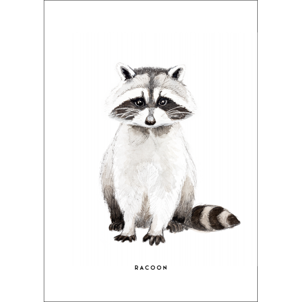 Ansichtkaart Wasbeer - 10 stuks