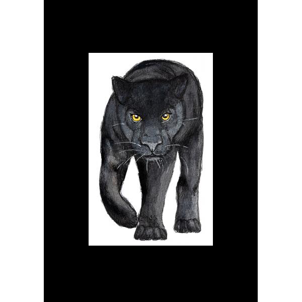 Ansichtkaart Zwarte panter - 10 stuks