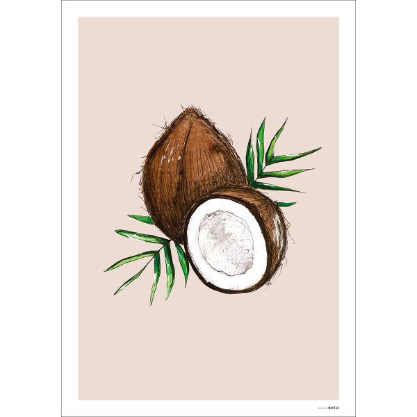 Poster Food Cocosnoot 15x20cm