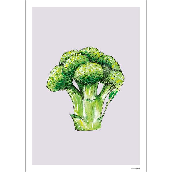Poster Food Broccoli 15x20cm - 6 stuks