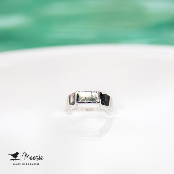 Ring Sterrenbeeld Leeuw zilver